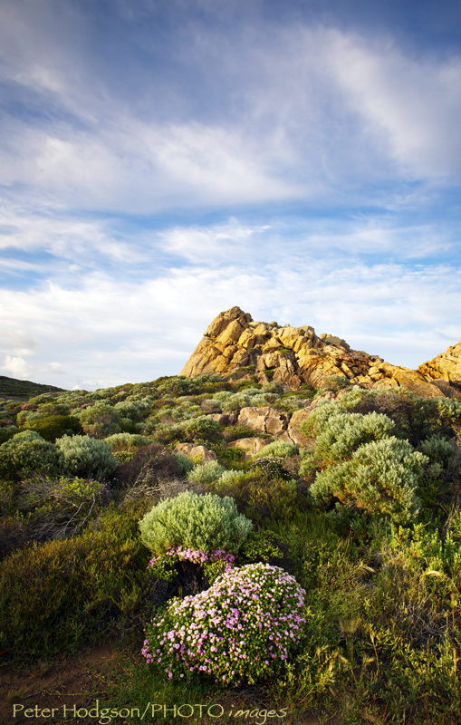Cape Naturaliste. google+
