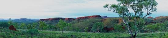 Pilbara Magic.